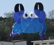 Cervia 2008